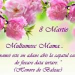 MESAJE de ziua MAMEI, 8 MARTIE 2015. Ce urări, SMS-uri şi felicitări emoţionante îi poţi transmite mamei tale | zlatnainfo.ro