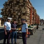 37 de metri cubi de material lemnos confiscaţi de polițiștii din Zlatna, în urma unui control în trafic