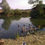 Doi bărbați sunt cercetați penal după ce au pescuit fără permisiune într-o baltă amenajată pe raza comnunei Almașu Mare