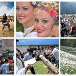 CALENDARUL evenimentelor culturale din 2017 organizate în județul Alba de Consiliul Județean | zlatnainfo.ro