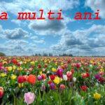 Nume de femei și bărbați care se sărbătoresc de Florii | zlatnainfo.ro