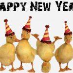 MESAJE SMS de Anul Nou 2018 haioase. Urări și Felicitări amuzante pe care le puteți transmite celor dragi | zlatnainfo.ro