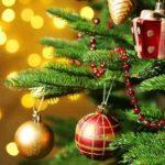 MESAJE de Crăciun fericit! Urări și felicitări pe care le poți trimite celor dragi | zlatnainfo.ro